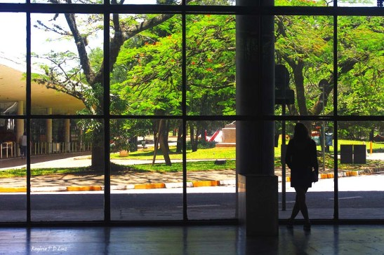 bienal-de-arte-de-sao-paulo-2016-05