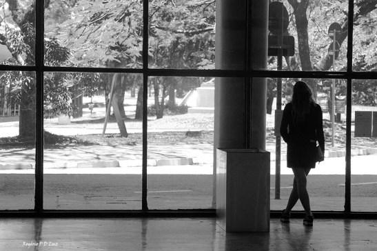 bienal-de-arte-de-sao-paulo-2016-08-pb