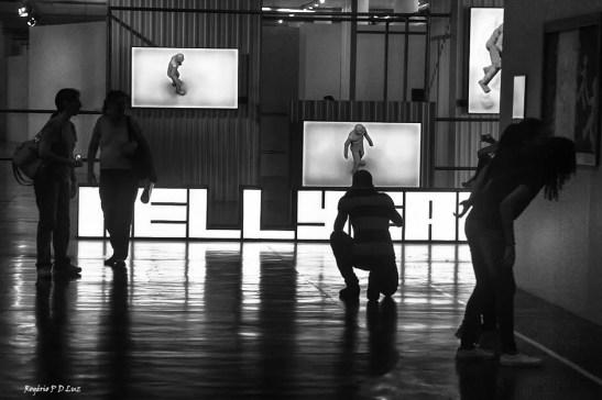 bienal-de-arte-de-sao-paulo-2016-13
