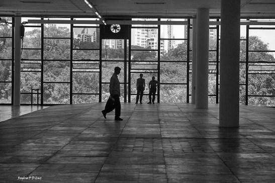 bienal-de-arte-de-sao-paulo-2016-21