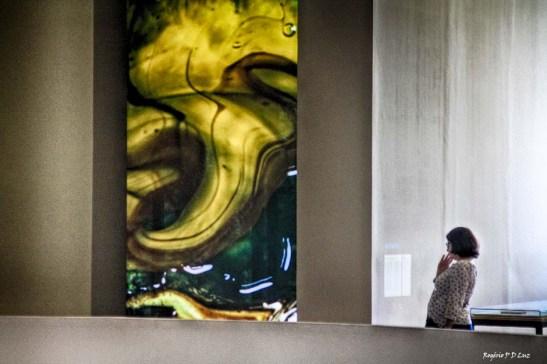 bienal-de-arte-de-sao-paulo-2016-30
