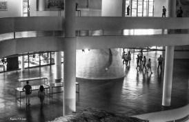 bienal-de-arte-de-sao-paulo-2016-33