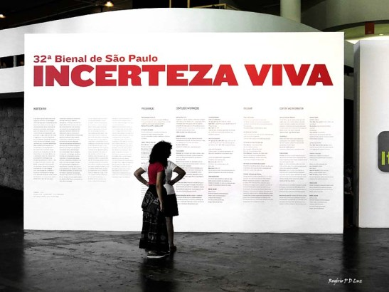 bienal-de-arte-de-sao-paulo-2016-36