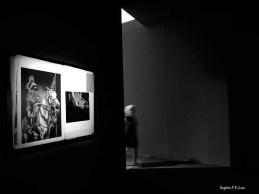 bienal-de-arte-de-sao-paulo-2016-45