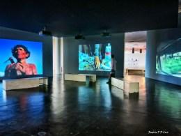 bienal-de-arte-de-sao-paulo-2016-53