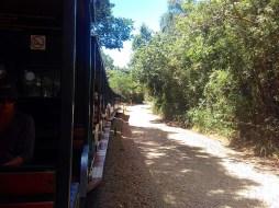 21-1-natal-em-foz-parque-del-iguazu-argentina