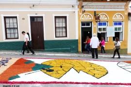 Corpus Christi 2017 em Santana Parnaiba 025
