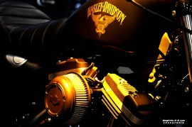 Salao 2 Rodas 2017 . Harley Davidson (05)