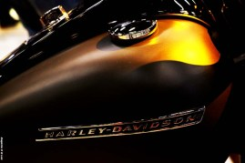 Salao 2 Rodas 2017 . Harley Davidson (09)