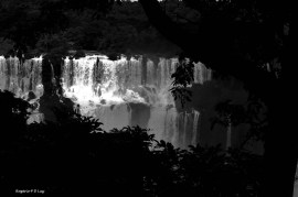 Cataratas do Iguacu Brasil (14)