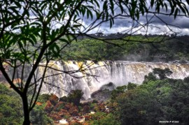 Cataratas do Iguacu Brasil (31)