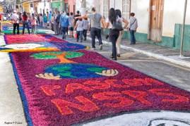 Corpus Christi em Santana Parnaiba 2018 (05)