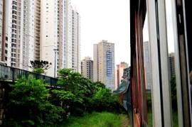 Trem Curitiba-Morretes 08