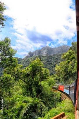 Trem Curitiba-Morretes 25